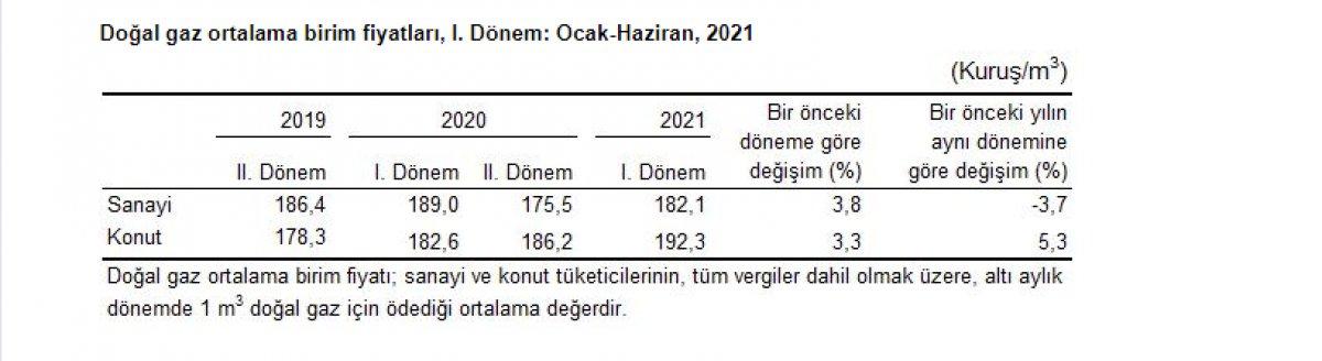 Sanayi ve konutlarda kullanılan elektrik ve doğalgaz fiyatları arttı #5