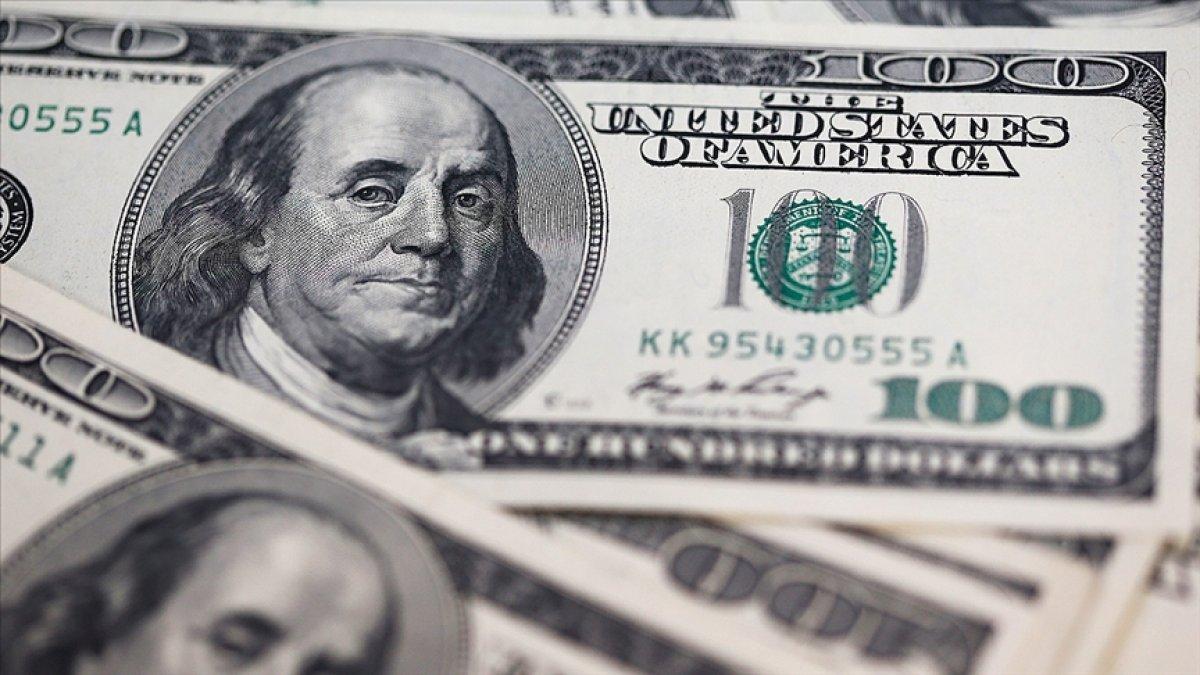 Merkez Bankası rezervleri 122 milyar doları aştı #1