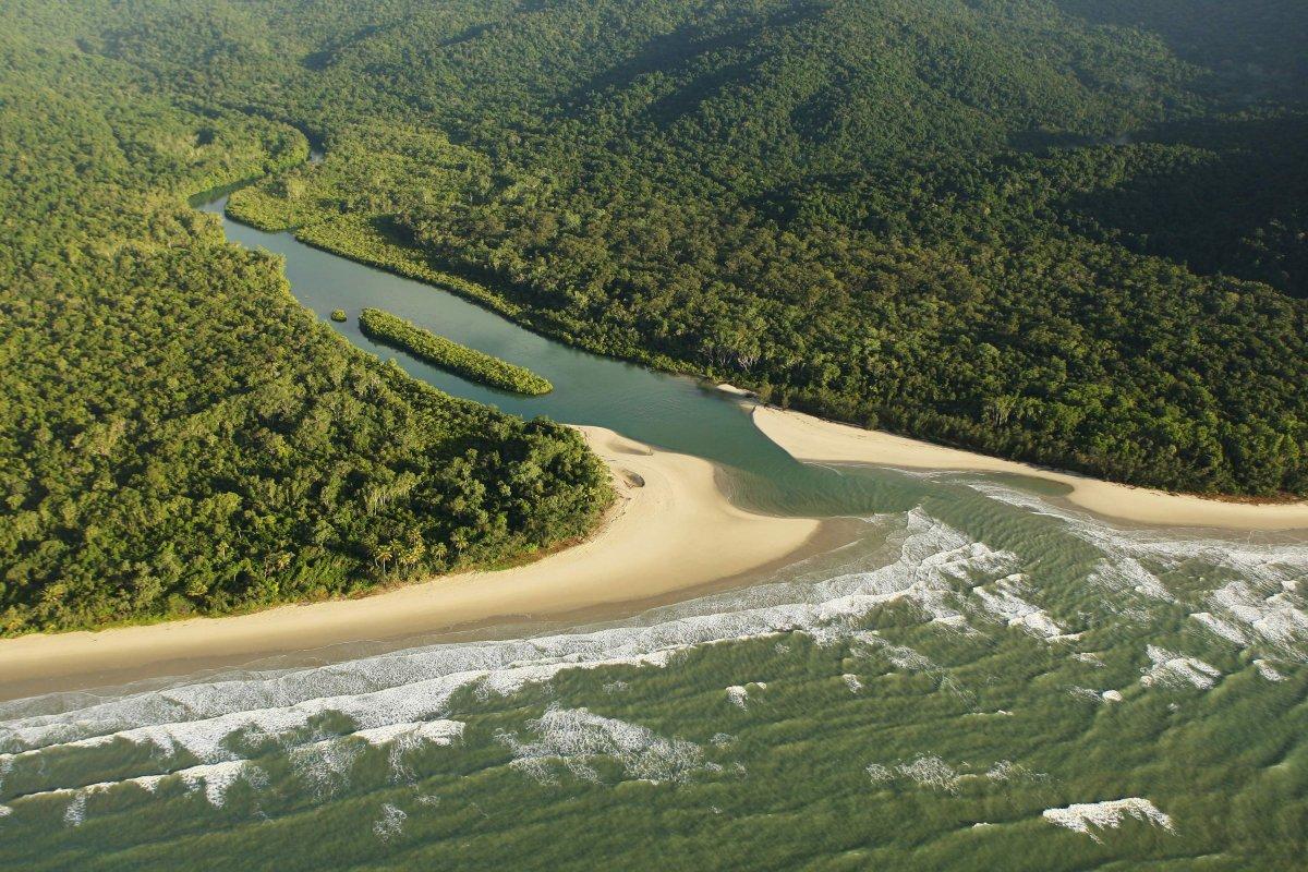 Dünyanın en eski yağmur ormanı Daintree, Aborjinlere geri verildi #1