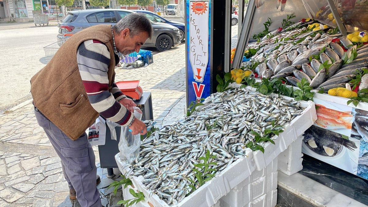 Batı Karadeniz de hamsi azaldı, palamut tezgahtaki yerini aldı #5