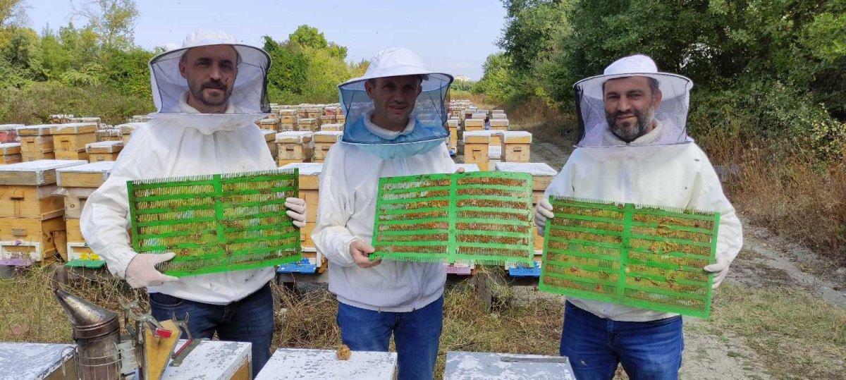 Havalar soğudu, Bursa da arıcılar propolis üretmeye başladı #1