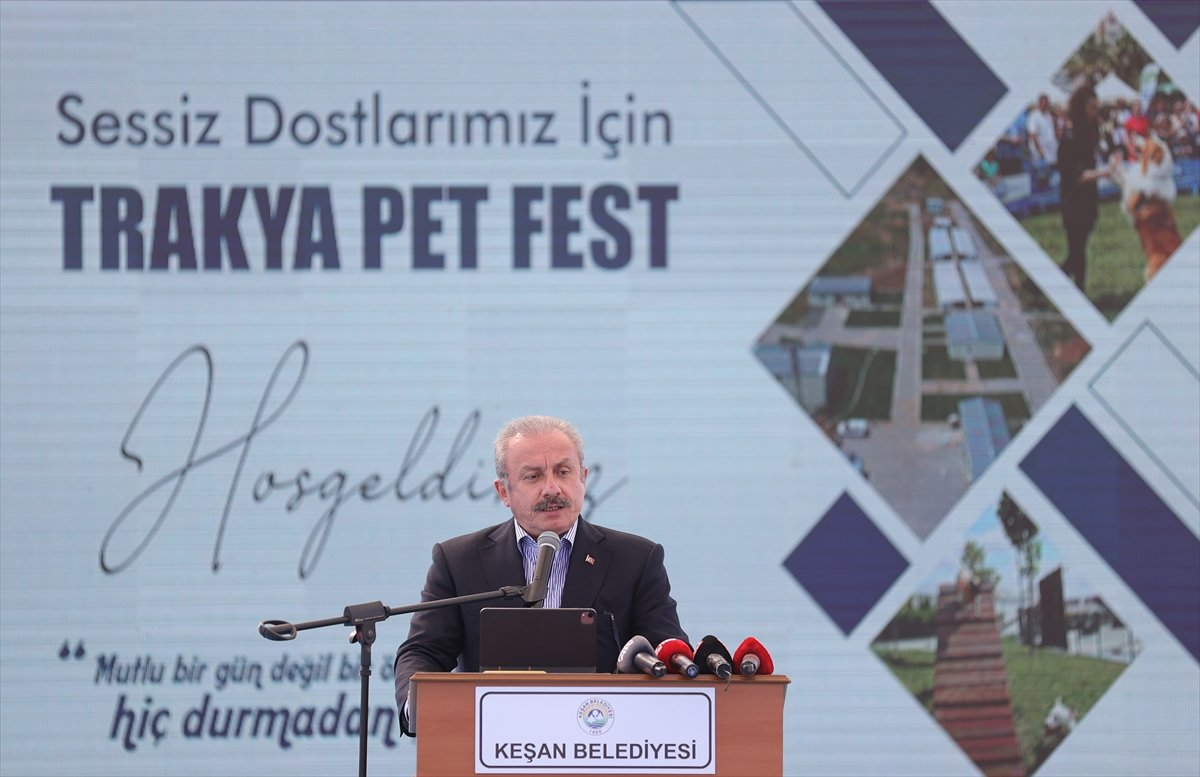 TBMM Başkanı Mustafa Şentop'a, sokak köpeği hediye edildi  #1