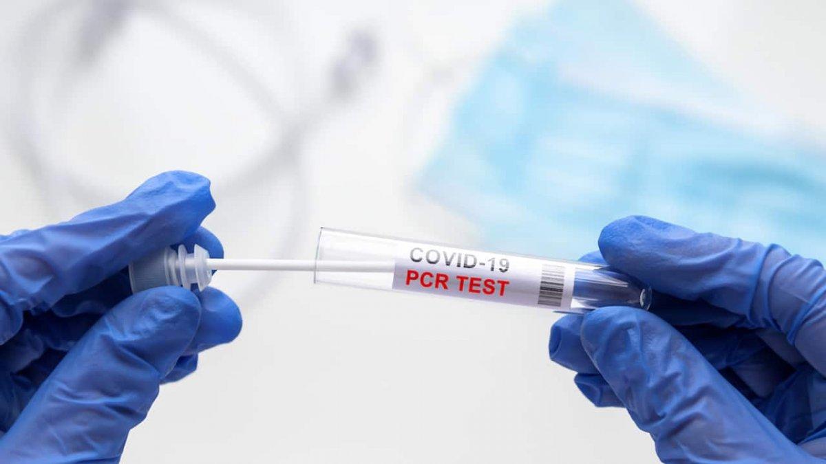 Okullarda PCR testi uygulaması başladı mı, nasıl yapılacak? Veliler dikkat  #1