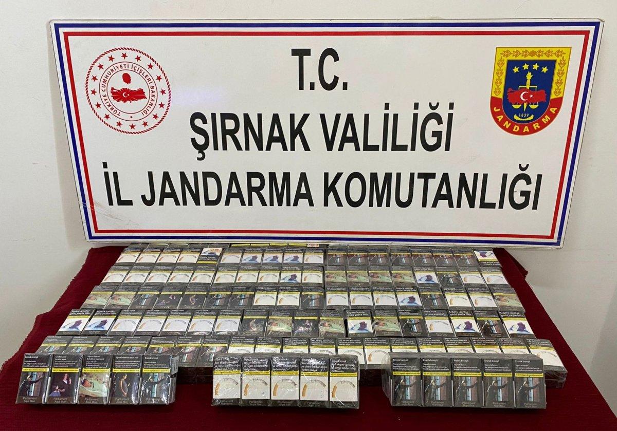 Şırnak ta terör finansçılarına darbe: 84 gözaltı #1
