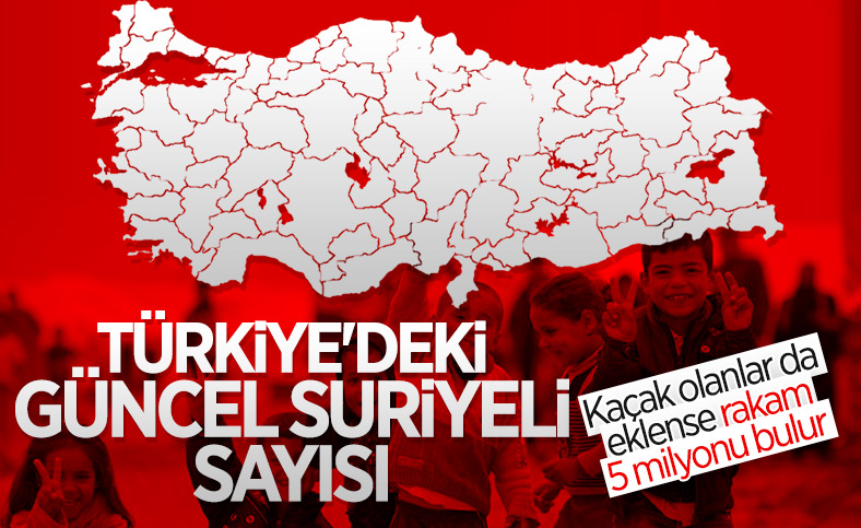 Türkiye'de 3.7 milyon Suriyeli geçici koruma statüsünde
