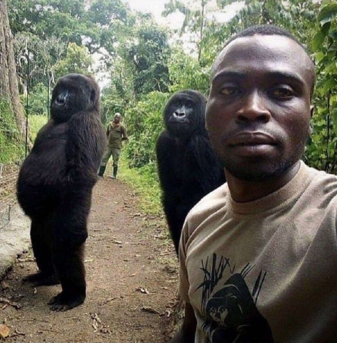 Bakıcısıyla çektirdiği selfie yle tanınan Ndakasi hayatını kaybetti #2