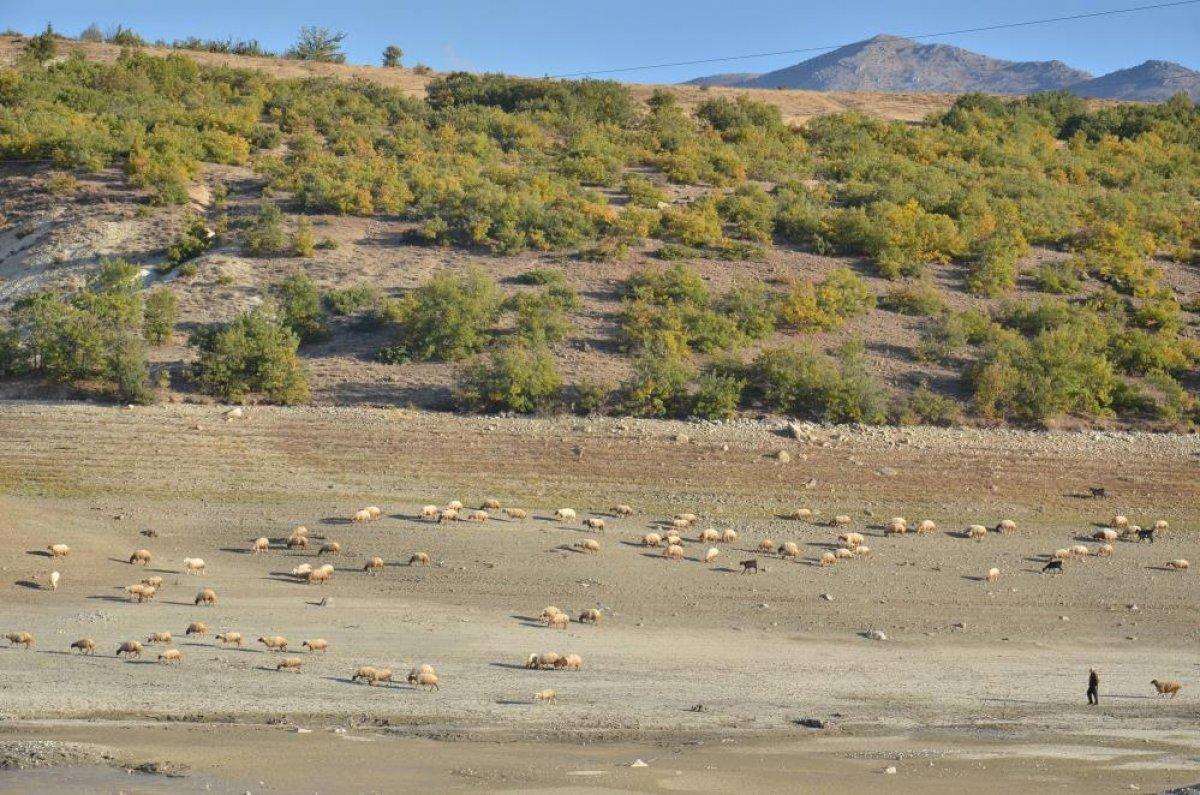 Kahramanmaraş ın 35 yıllık göletinde binlerce metreküp su kurudu #3
