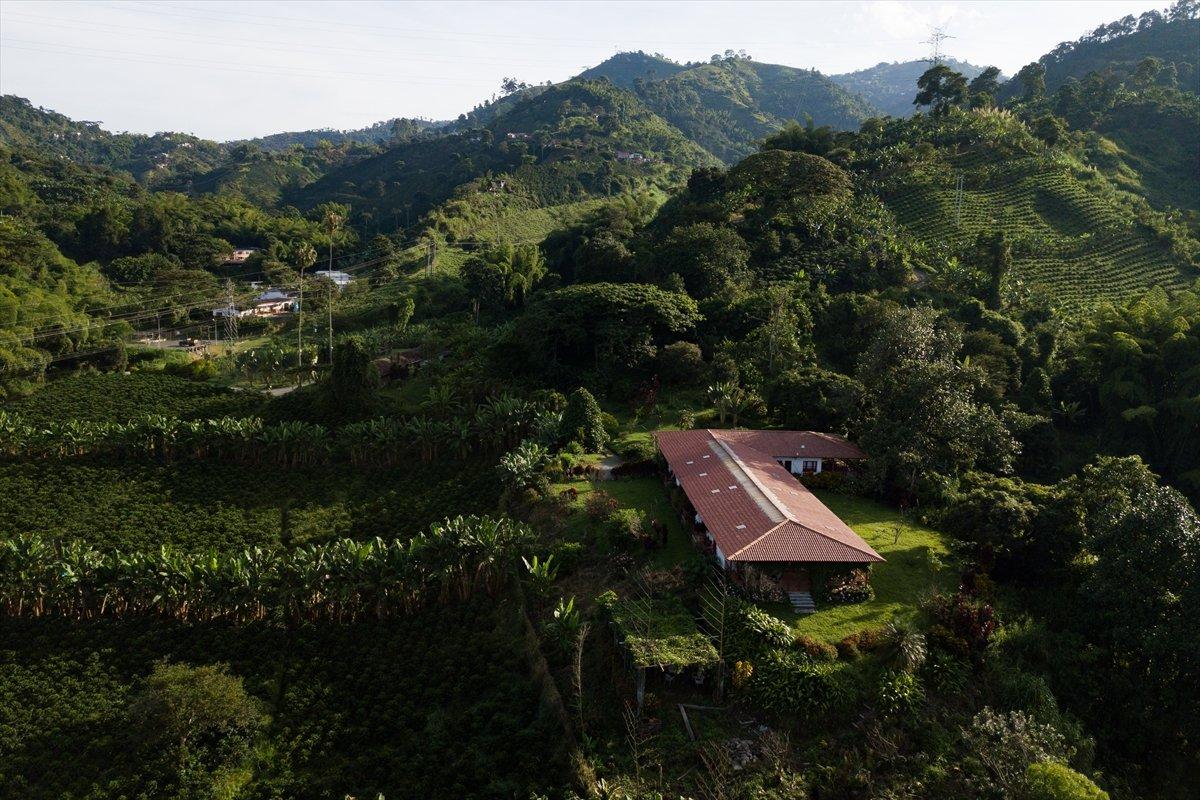 Kolombiya daki kahve diyarı Manizales in eşsiz doğası #3