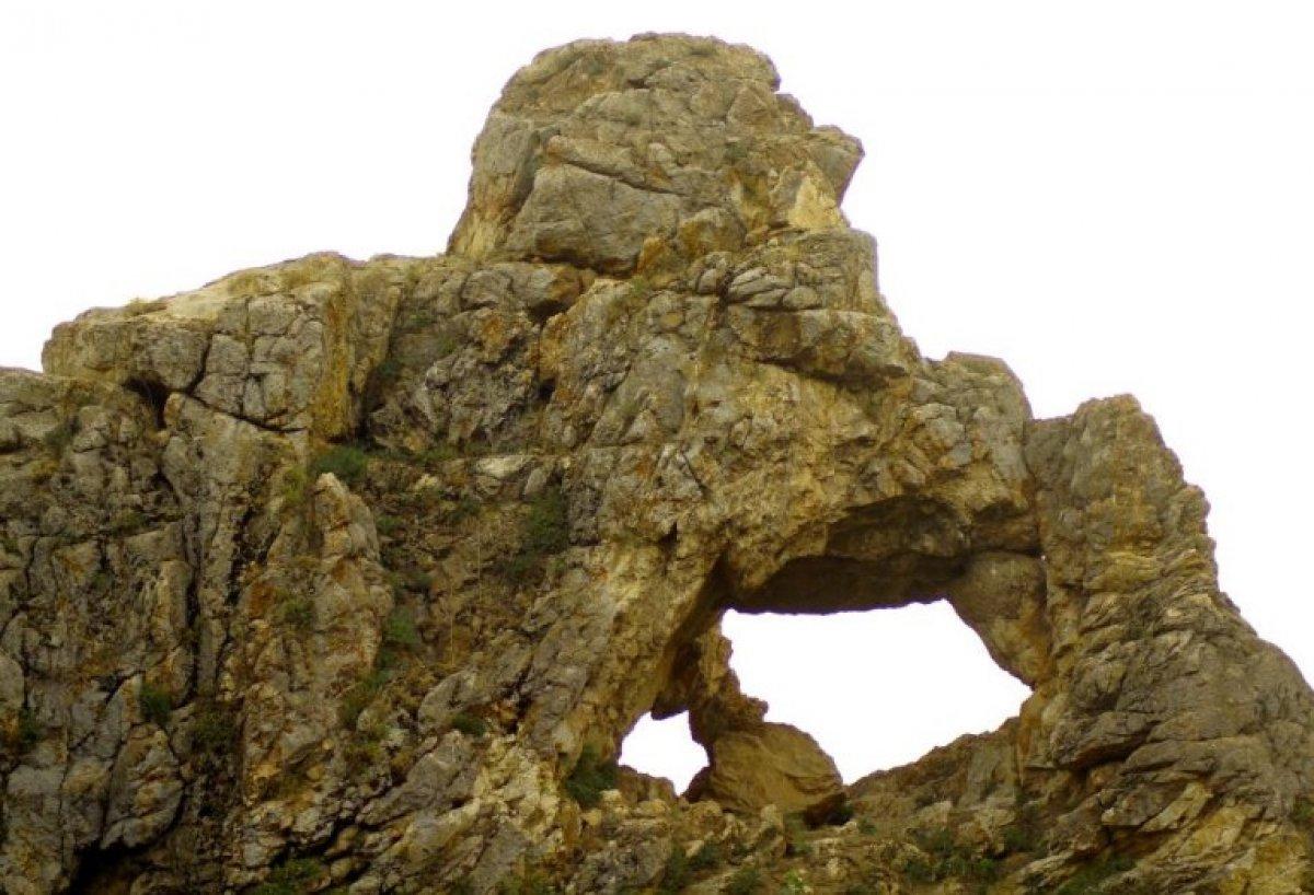Hakkari Yüksekova da düşünen maymun figürlü kayalık görüntülendi #3