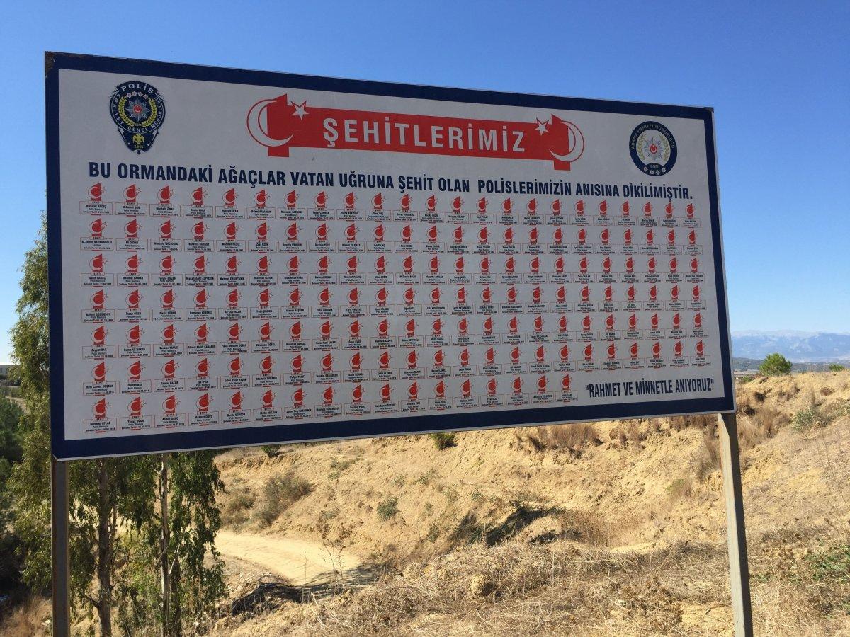 Adana'da şehitler ormanını yakan zanlı, yangın çıkartırken yakalandı #9