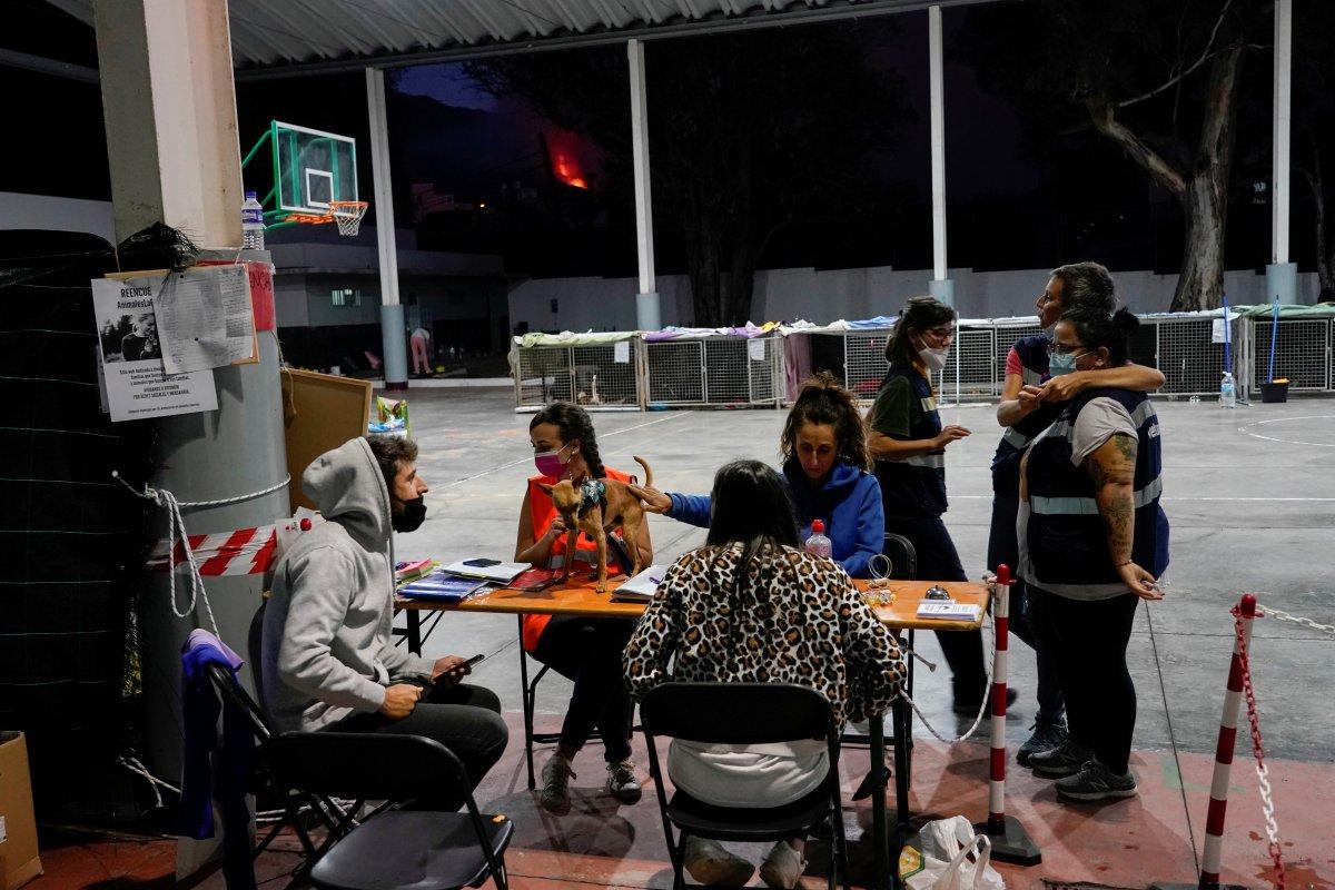 La Palma da lavlar 431 hektarlık alanı kapladı #6