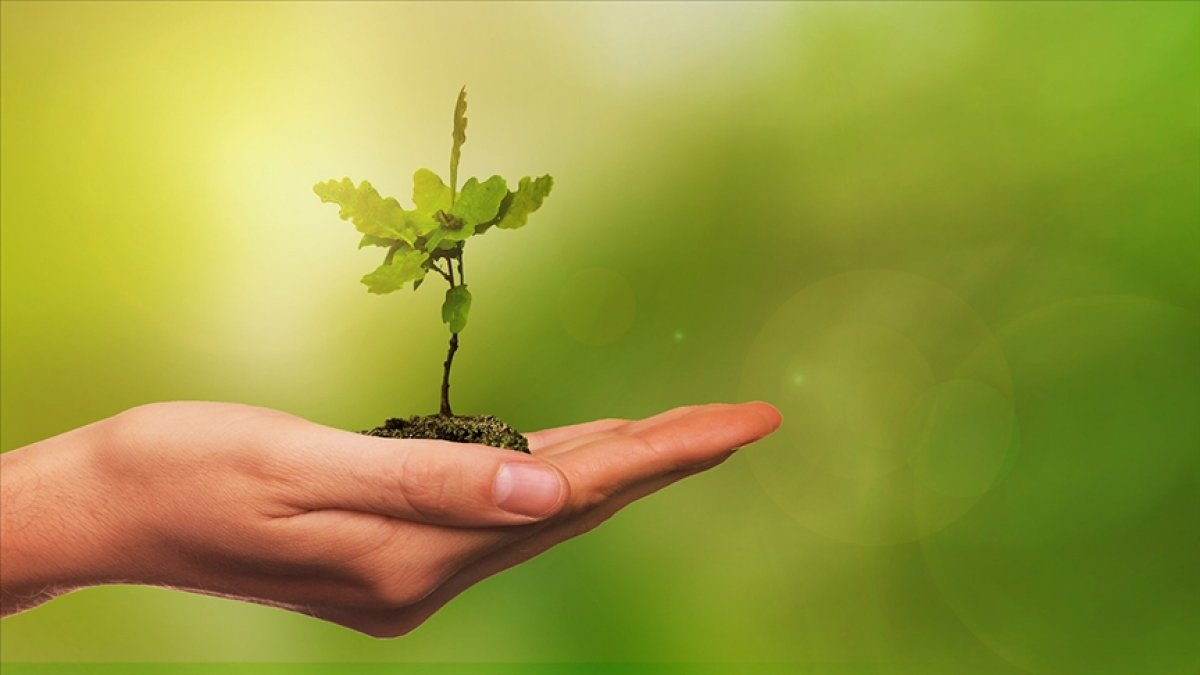 Paris Anlaşması yla Yeşil Mutabakat a uyum için birçok sektörde köklü değişim olacak #1
