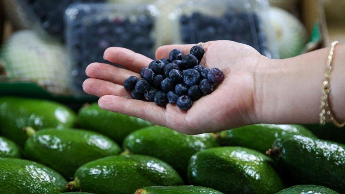 Tropikal meyve ihracatı yüzde 172 arttı #3