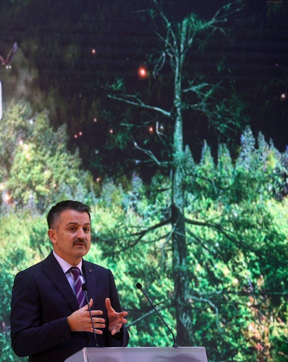 Bekir Pakdemirli: Yanan alanları tekrar ağaçlandıracağız #5