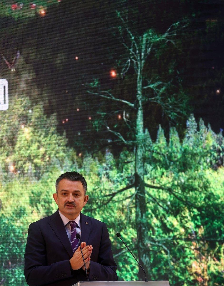Bekir Pakdemirli: Yanan alanları tekrar ağaçlandıracağız #3