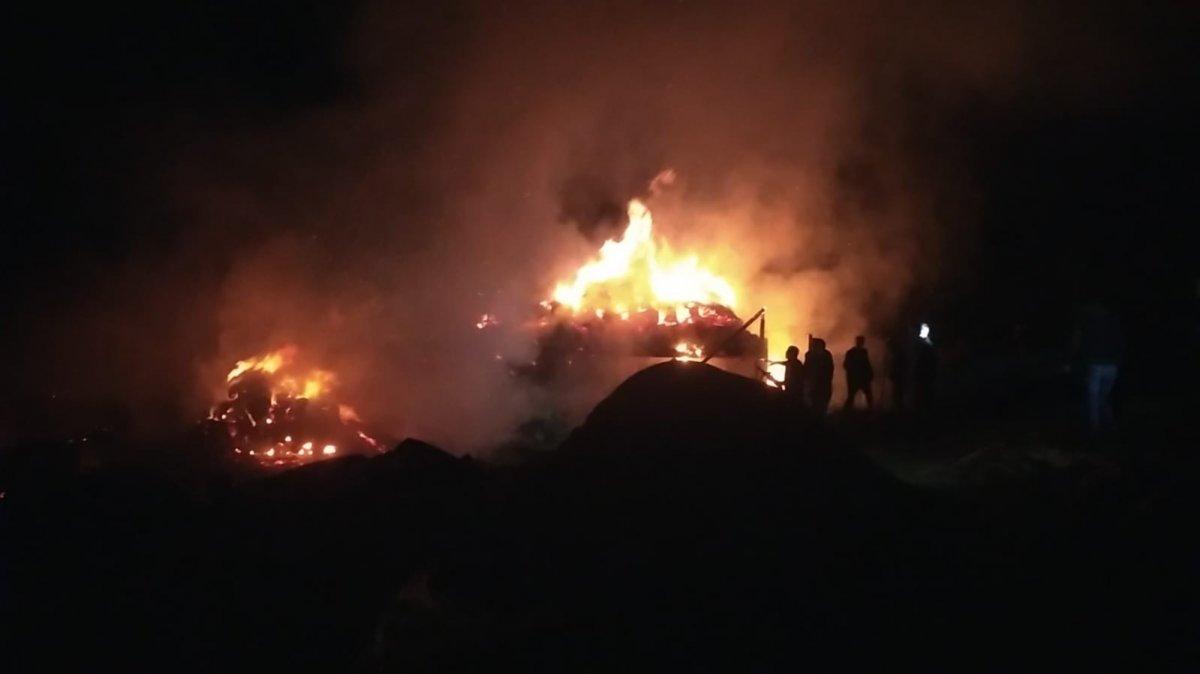 Erzurum daki yangın  2 ev, 5 ahır ve 1 kileri kül etti #2