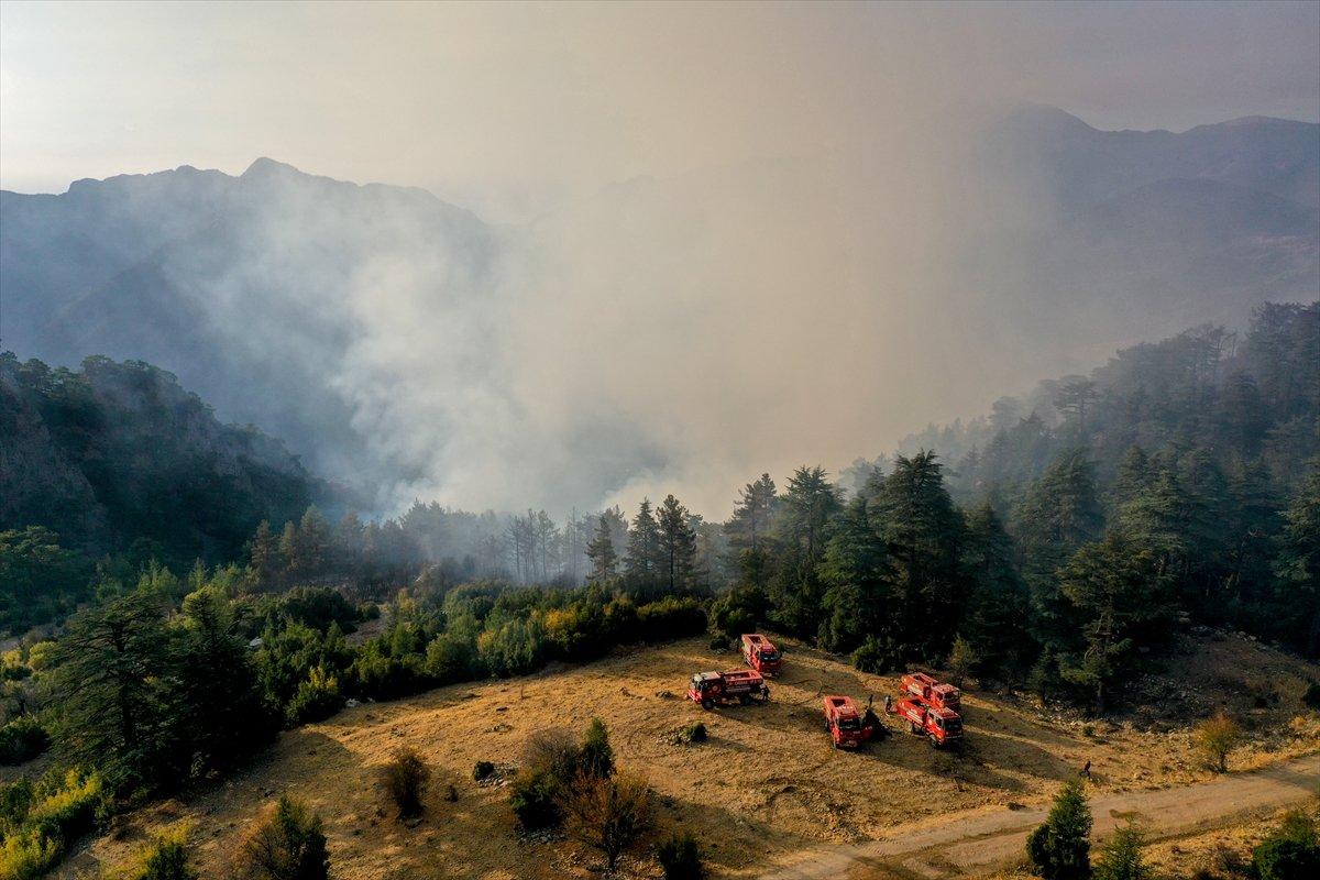 Kemer de orman yangını #4