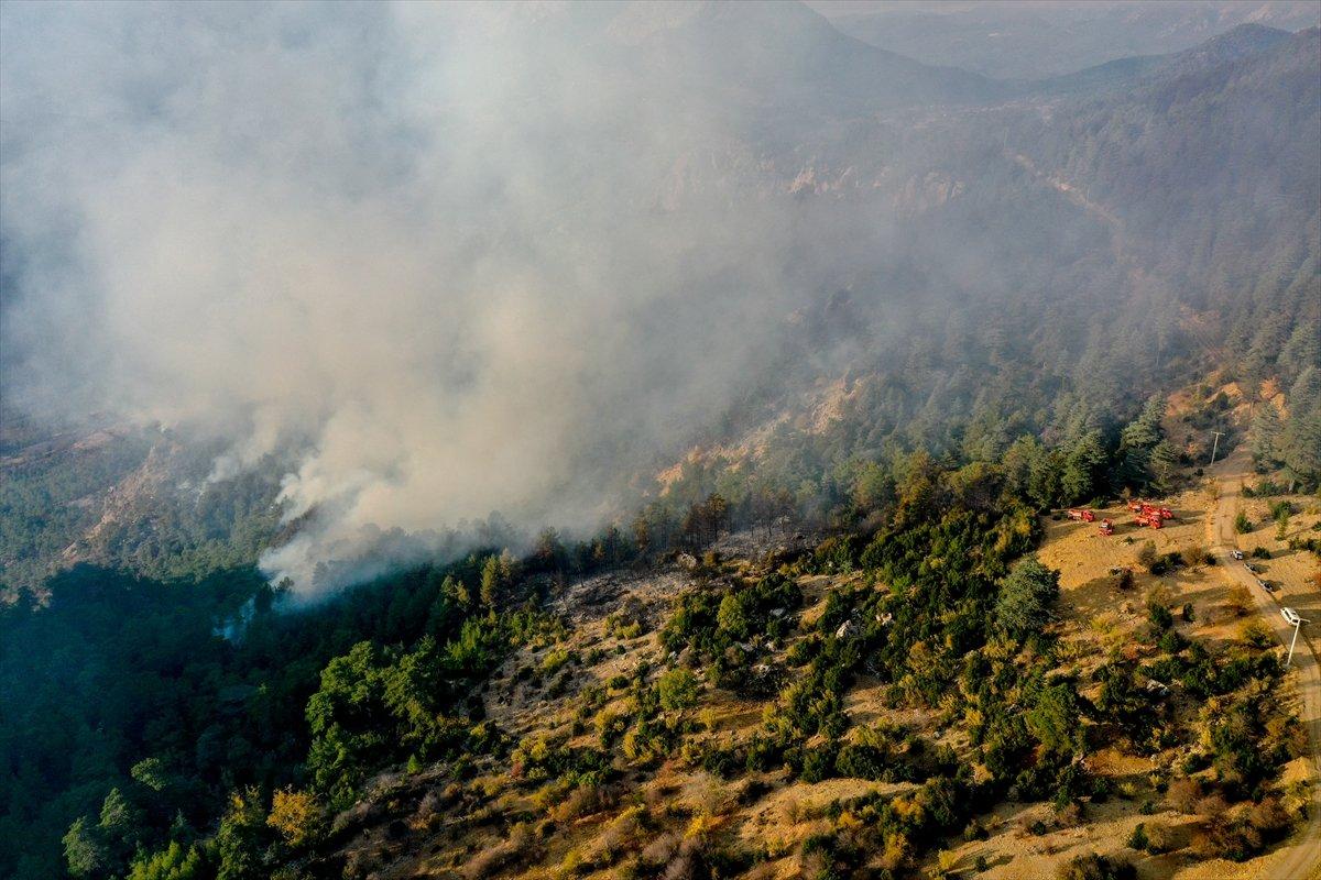Kemer de orman yangını #1