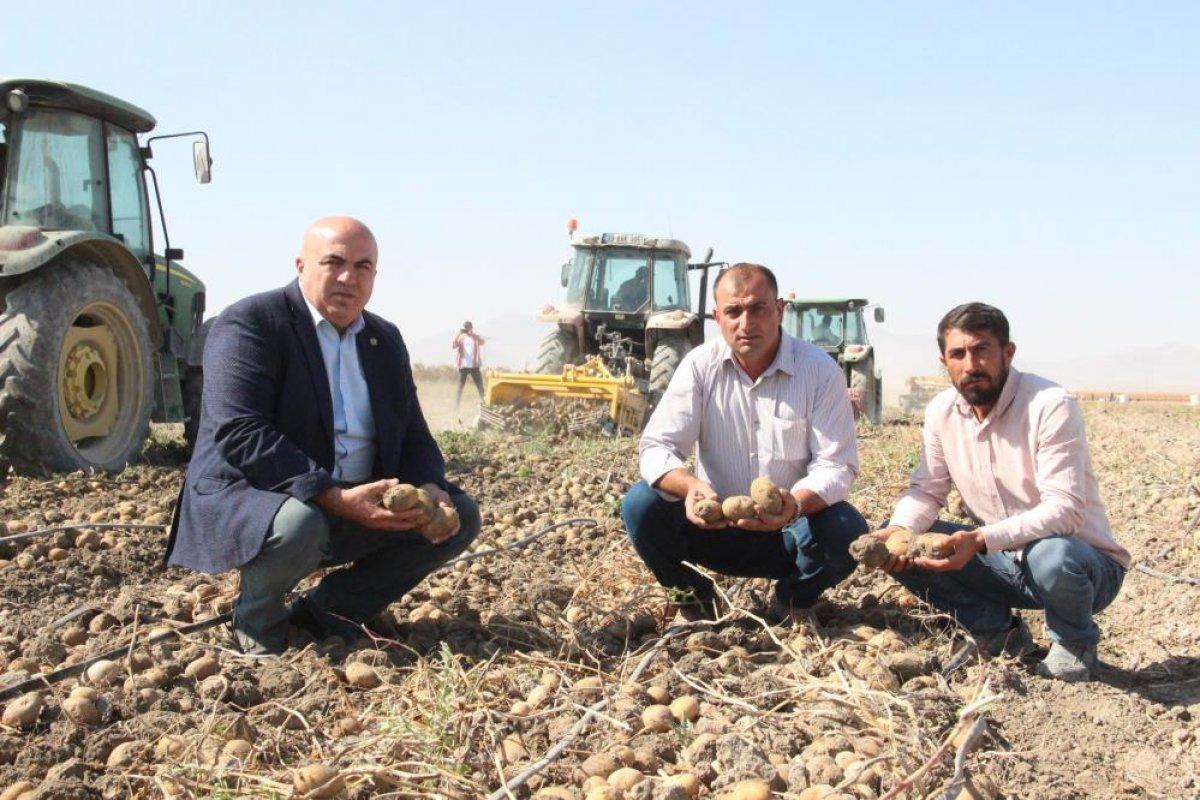 Karaman da çiftçiler patates hasadına kova atma töreni ile başladı #12
