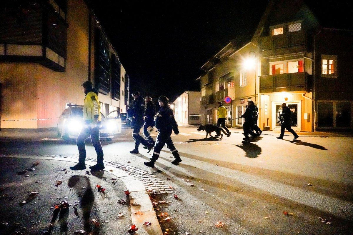 Norveç'teki oklu saldırganın kimliği belli oldu #2
