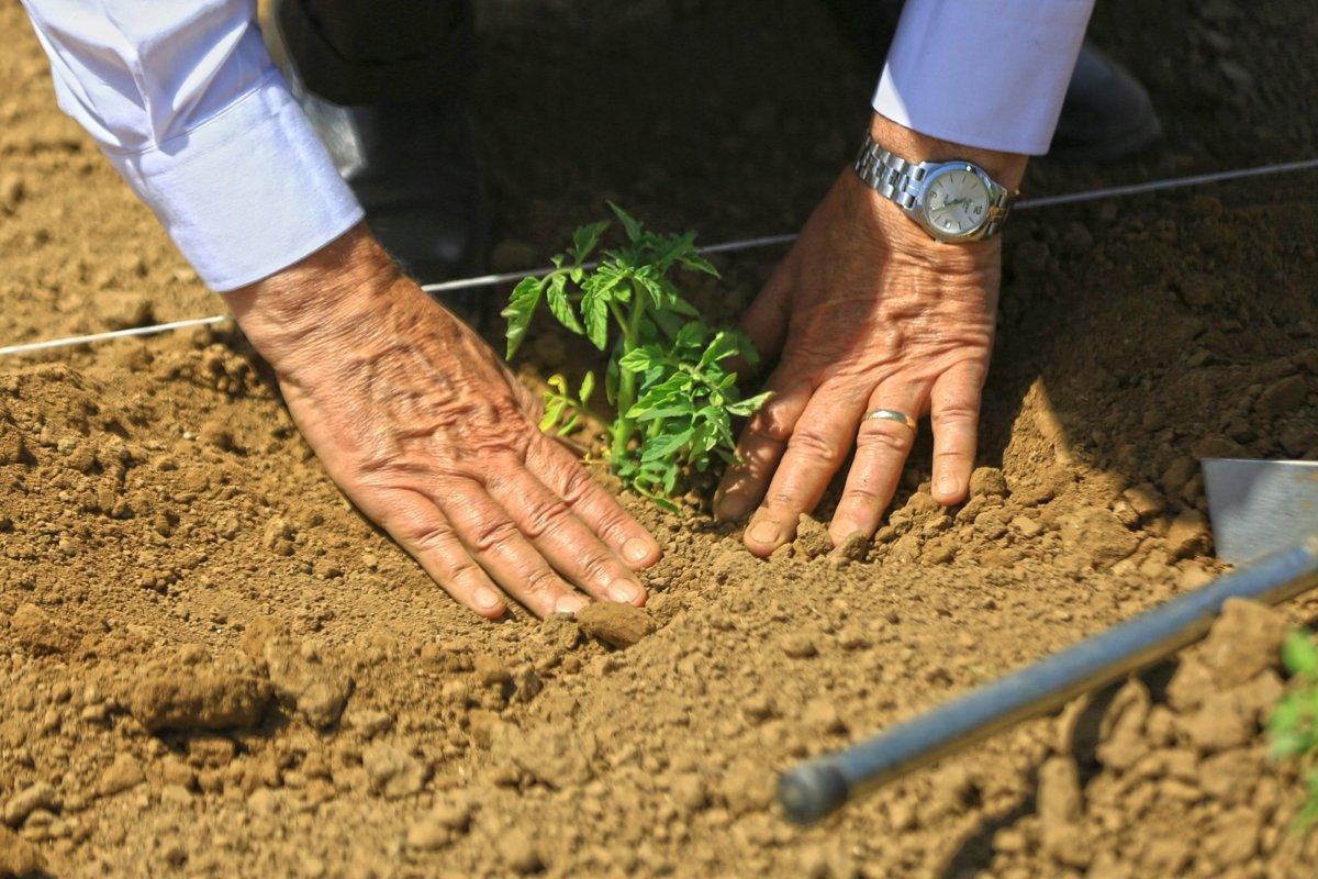 Suya göre tarım çözümü başladı  #1
