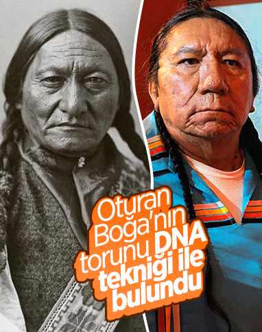 Oturan Boğa'nın en büyük torunu, DNA analizi ile bulundu