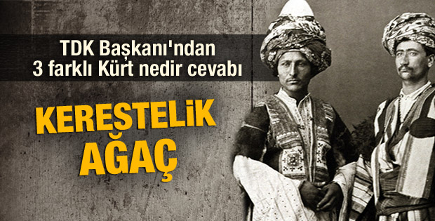 TDK Başkanı Mustafa Kaçalin'den Kürt kelimesinin anlamı