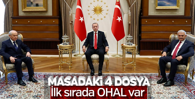 Erdoğan-Bahçeli görüşmesinin detayları