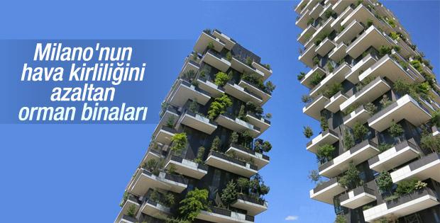 Milano'nun dikine orman binaları
