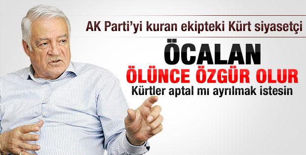 Dengir Mir Mehmet Fırat: Öcalan ölünce özgür olacak