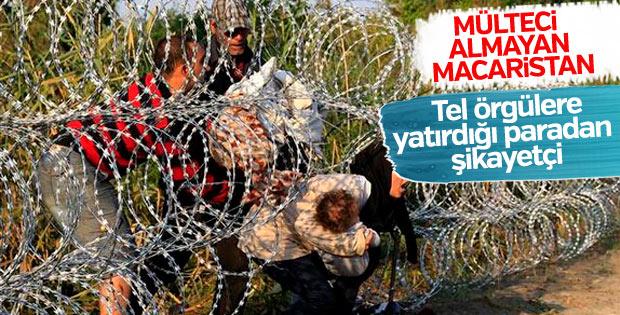 Macaristan ve Lüksemburg arasında sığınmacı gerginliği