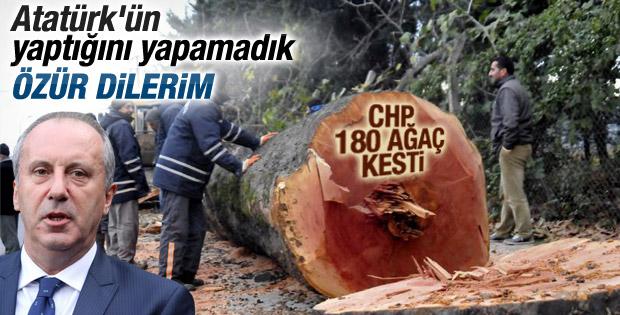 Muharrem İnce'den ağaç katliamı için açıklama