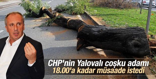 Muharrem İnce ağaç katliamı için açıklama yapacak