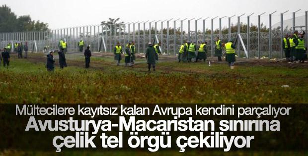 Avusturya Macaristan sınırına tel örgü çekecek