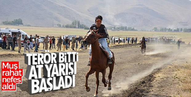 Muş'ta terör bitti, ata sporu at yarışları hız kazandı