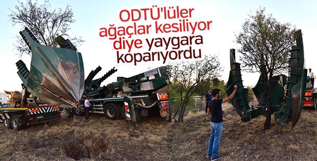 ODTÜ'de ağaçlar katlediliyor yalanı