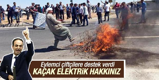 Osman Baydemir'den 'sayaç karşıtı' çiftçilere destek