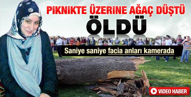 Ağaç vatandaşların üzerine böyle devrildi