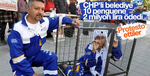 CHP'li belediyeden 2 milyon liralık penguen yatırımı