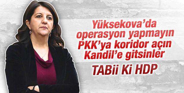 HDP'li vekillerin Yüksekova planı ortaya çıktı