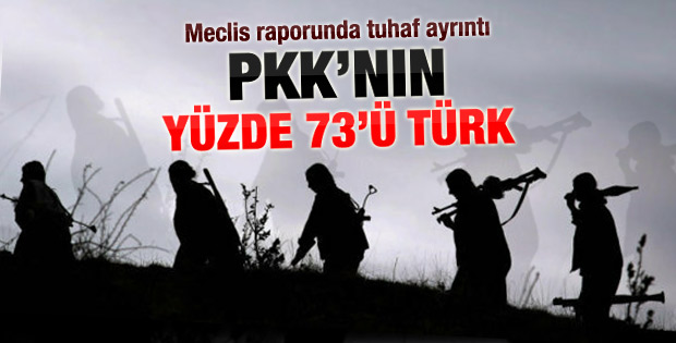 PKK ile ilgili kapsamlı rapor
