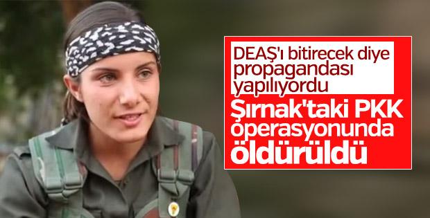 Terör örgütü PKK'nın ekran yüzü Şırnak'ta öldürüldü