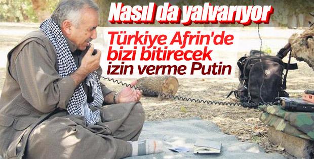 Türkiye'nin Afrin hazırlığı PKK'yı telaşlandırdı