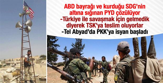PKK'dan sonra PYD de çözülüyor