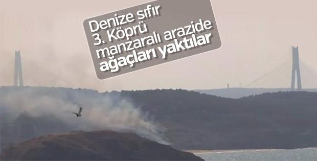 Beykoz Riva'da deniz kenarında orman yangını