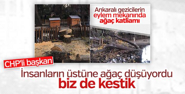 CHP'li Çankaya Belediyesi'nin ağaç katliamına açıklaması