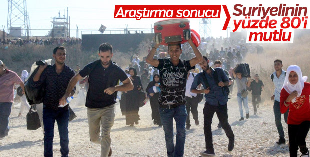 Türkiye'de günde 395 Suriyeli dünyaya geliyor