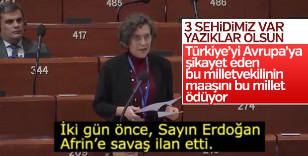 HDP'li Kerestecioğlu, Türkiye'yi Avrupa'ya şikayet etti