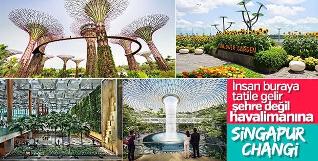 Çıtayı dağlara çıkaran havalimanı: Singapur Changi