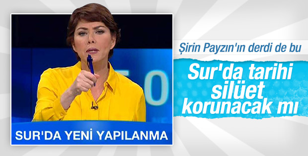 Şirin Payzın: HDP'li belediyenin de fikri alınmalı